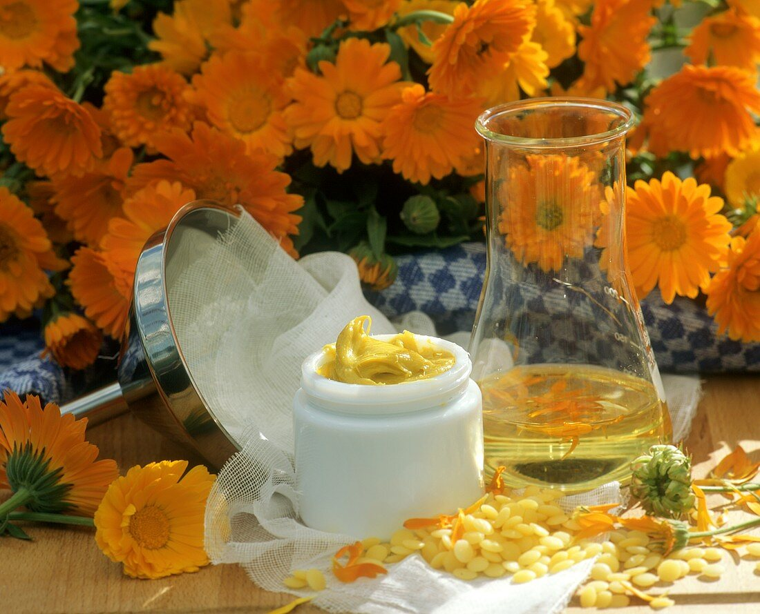 Home-made marigold ointment in crucible and ingredients