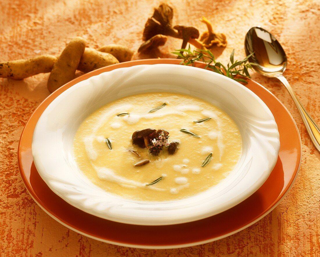 Creamed potato soup with chanterelles