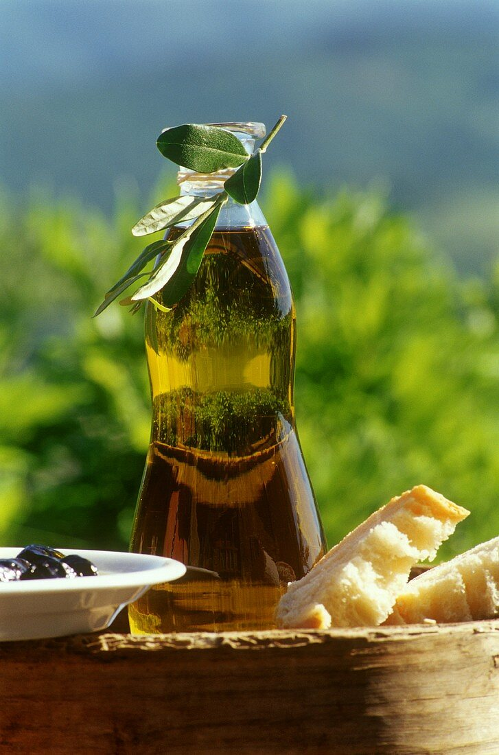 Olive oil in bottle with bread, olives and olive branch