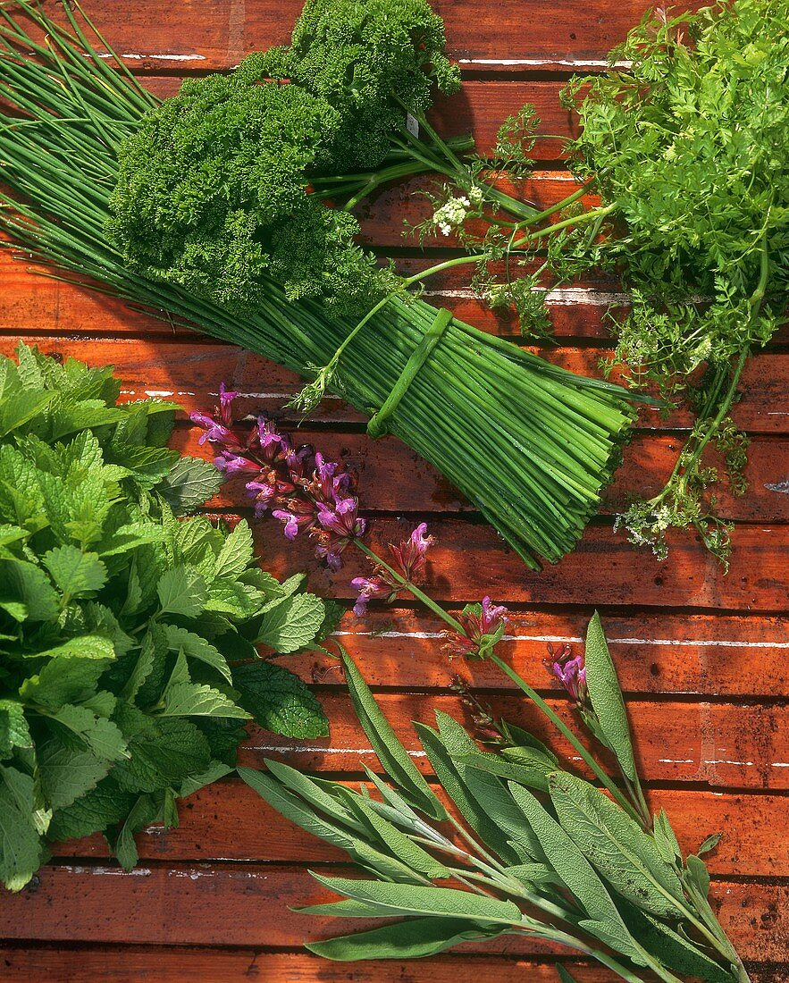 Various herbs on wooden beam