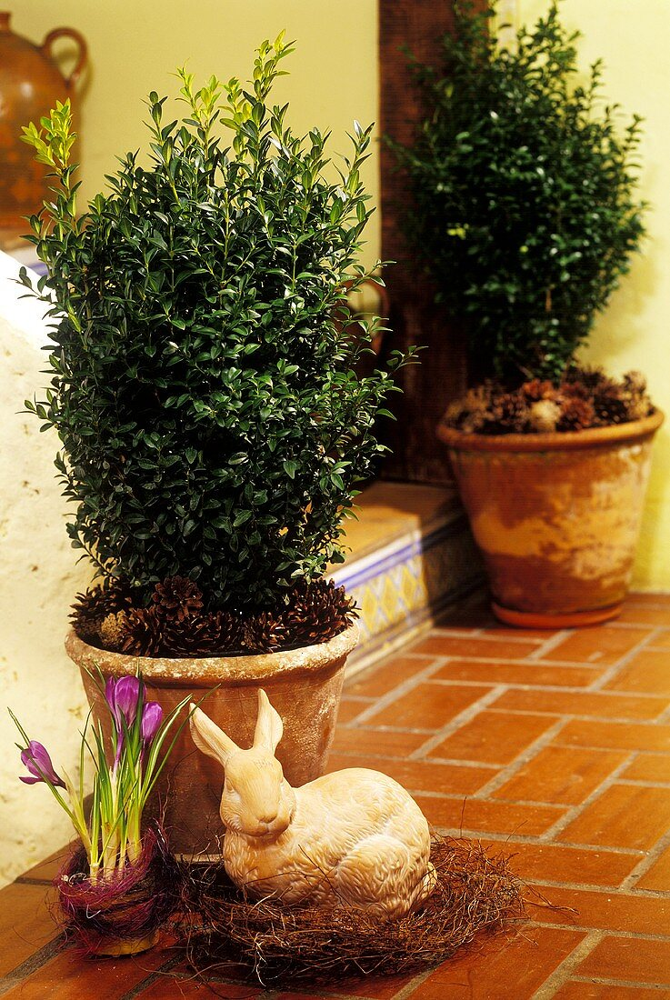 Easter decoration: terracotta Easter bunny at house entrance