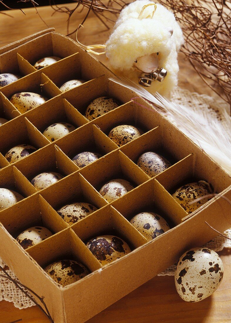 Quail's eggs and fabric lamb