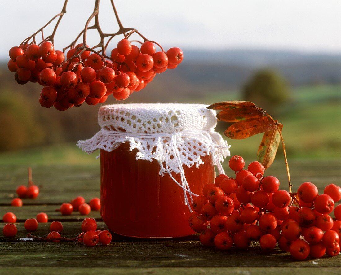 Rowan berry jam and rowan berries (mountain ash fruits)
