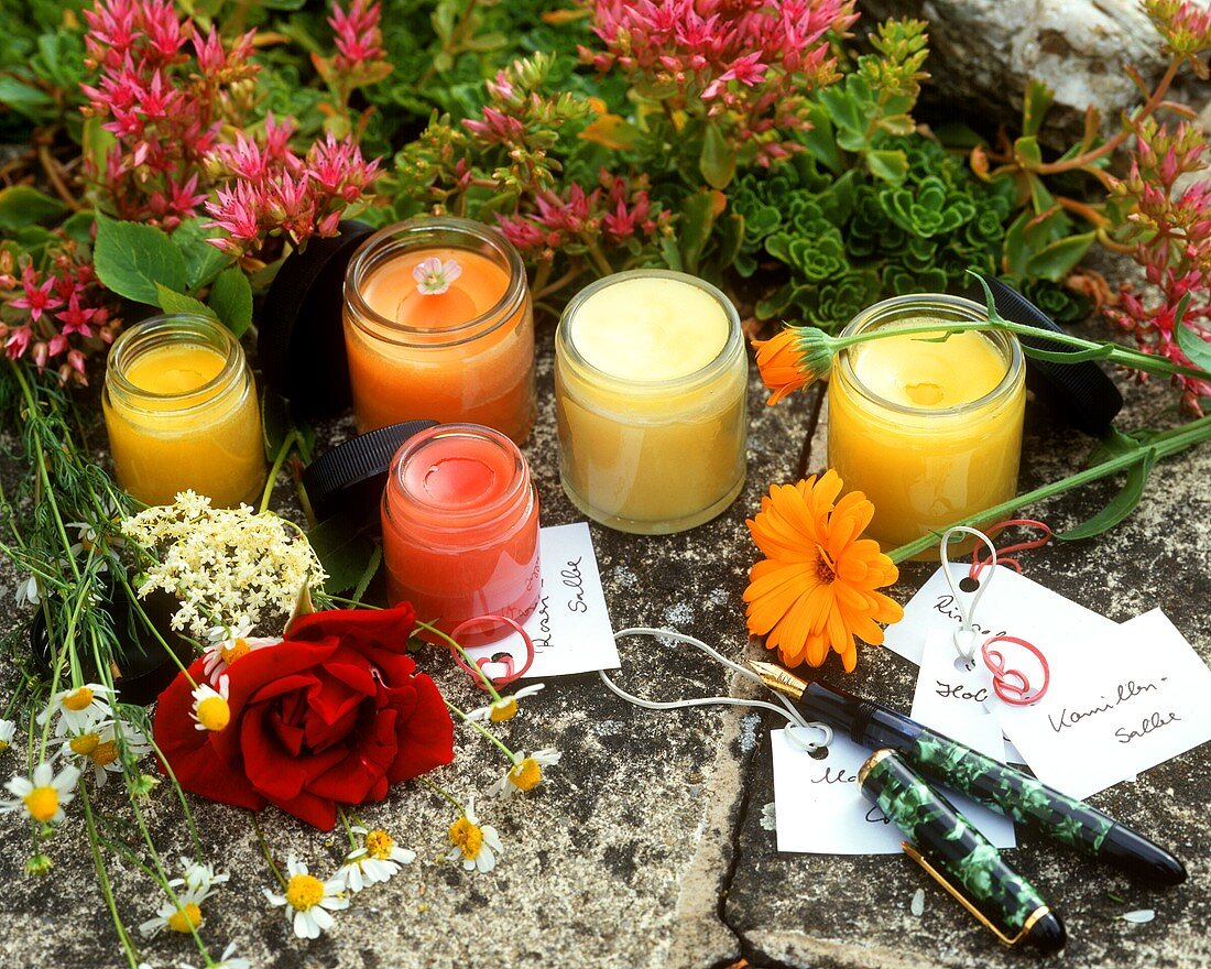 Various medicinal ointments in crucibles, medicinal flowers