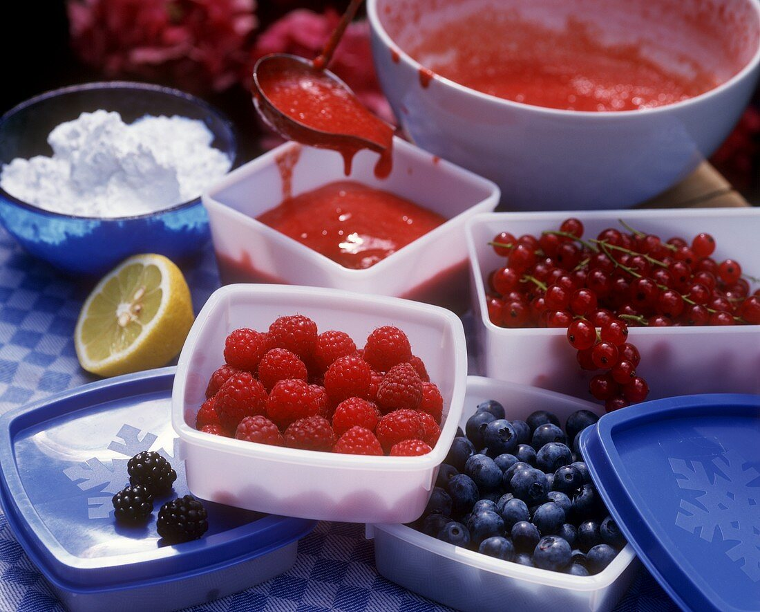Freezing various berries and strawberry puree