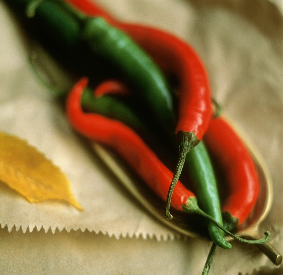 Red and green chilis