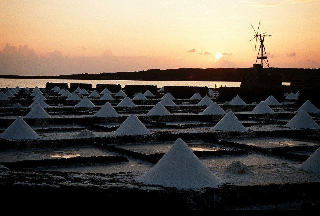 Salt-works on Lanzarote (Spain)