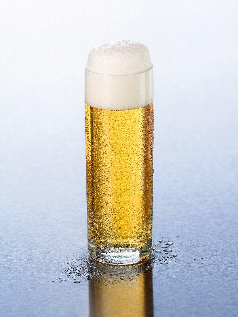 Kölsch beer with head of foam in a glass