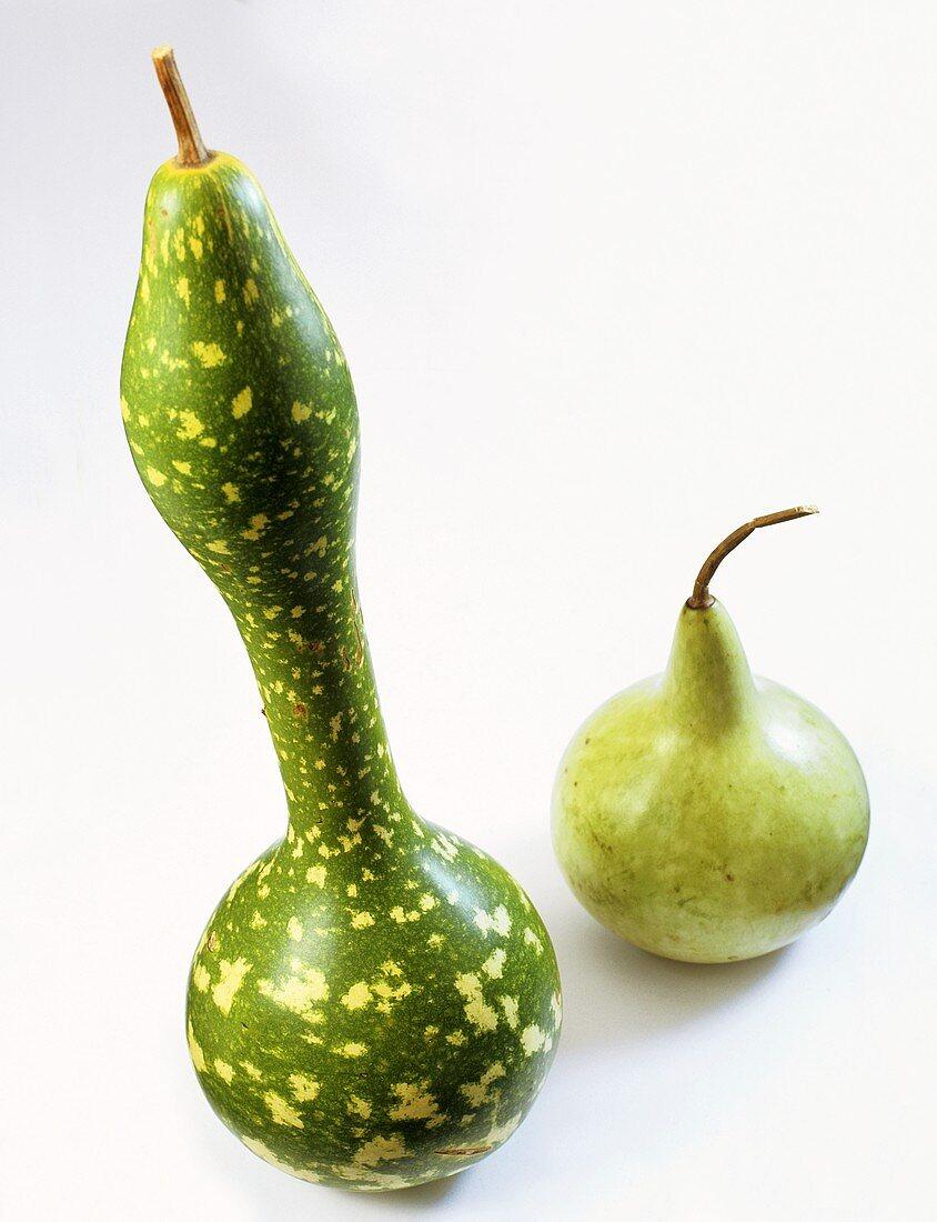 Bottle gourds (Langenaria)