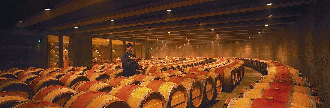 Wine cellar of famous Opus One winery, Oakville, California