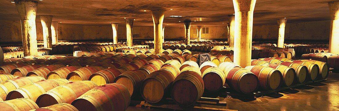 Wine cellar of large Vergelegen Winery, Helderberg, S. Africa