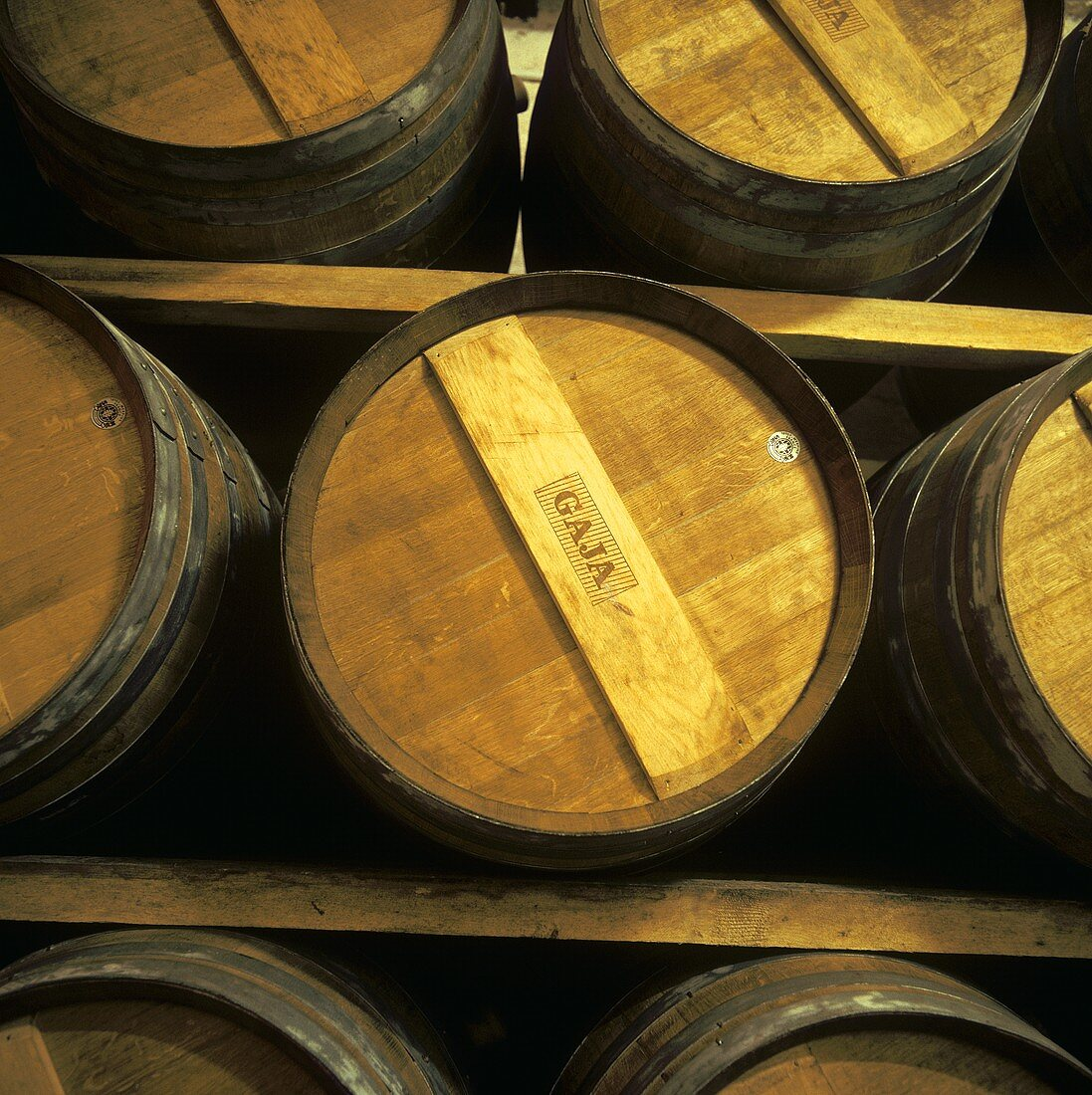 Oak barrels in Gaja wine cellar, Barbaresco, Piedmont, Italy