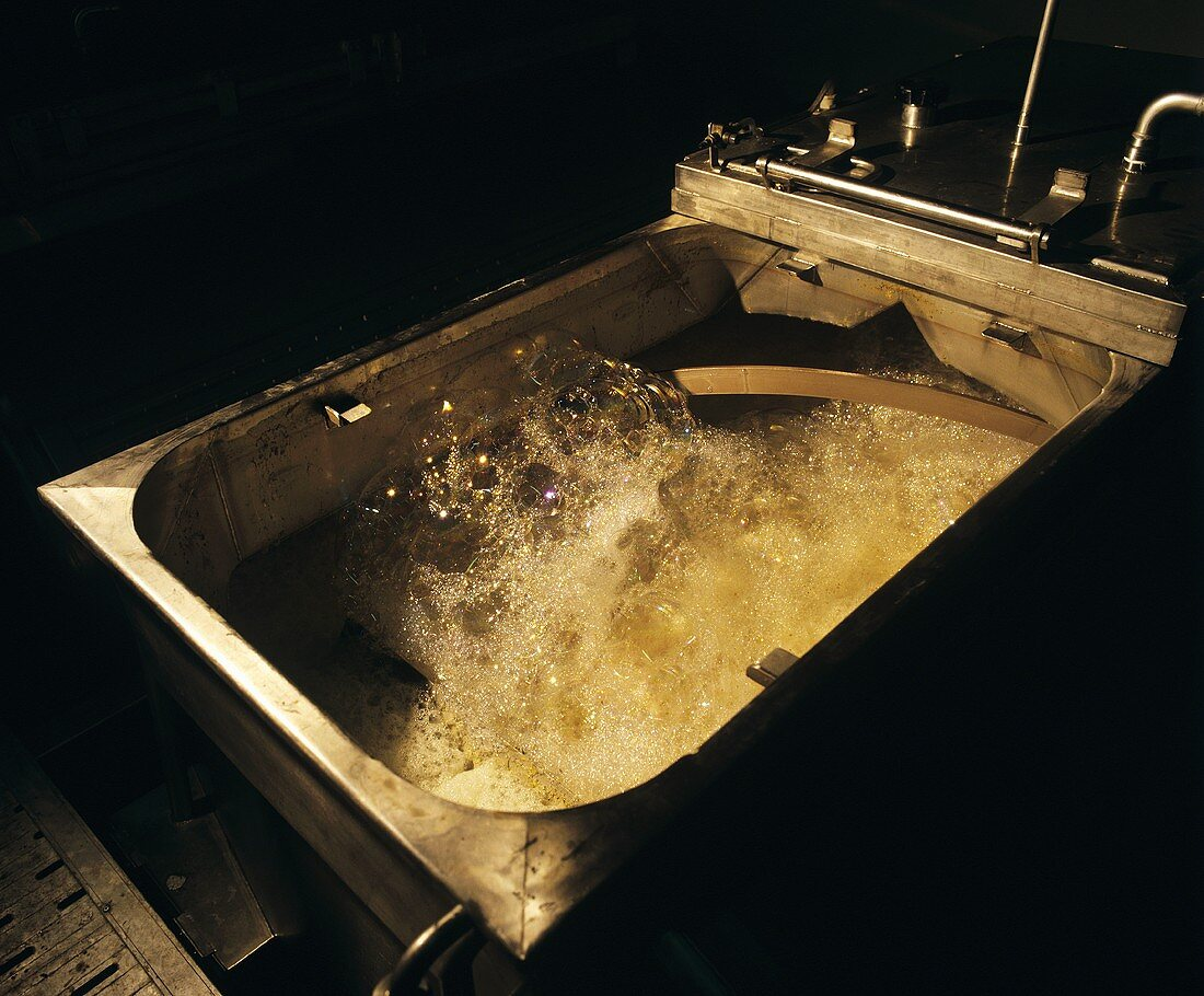 Froth-forming during white wine fermentation