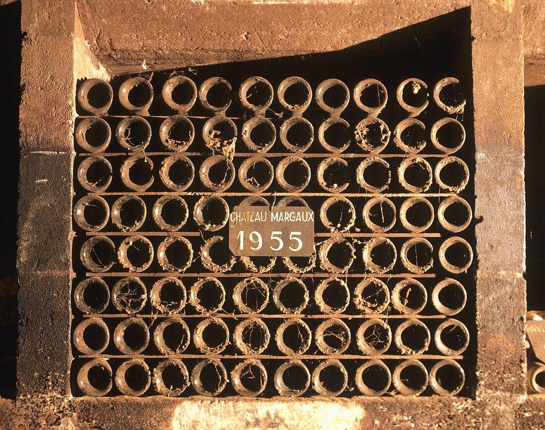 Old wine bottles, Château Margaux 1955, Bordeaux, France