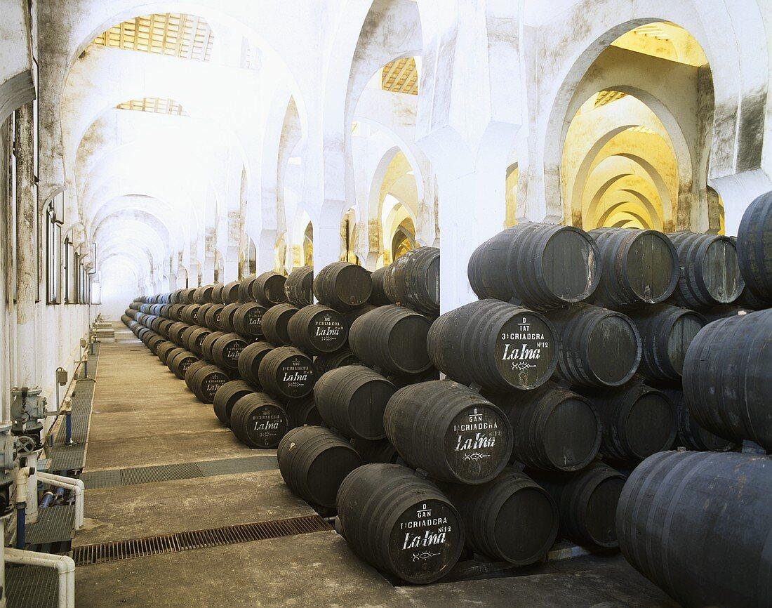 The Pedro Domecq bodega 'La Mezquita' in Jerez de la Frontera