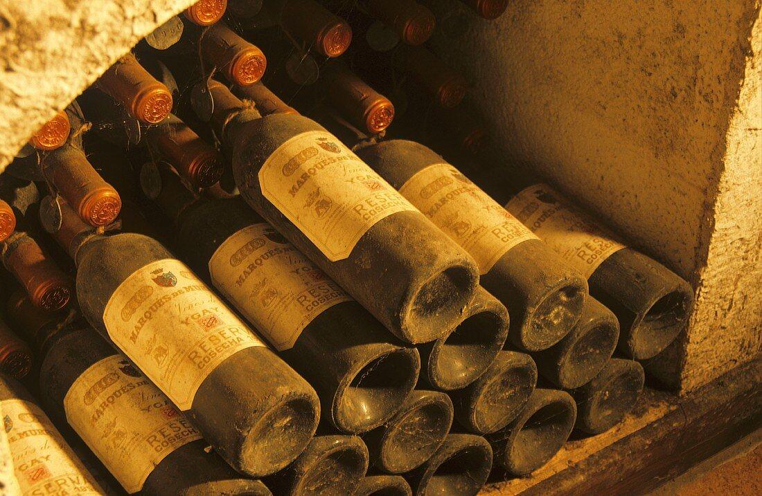 Wine cellar of Bodegas Marqués de Murrieta, Rioja, Spain