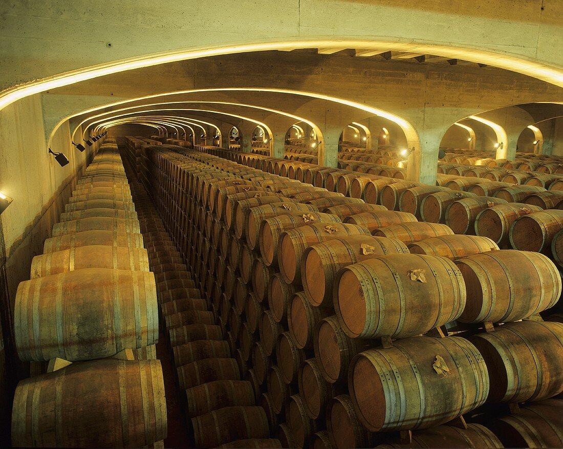 Wine cellar of Bodega Marqués de Cáceres, Rioja, Spain