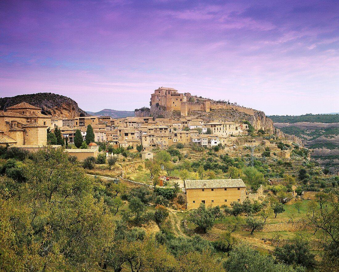 Somontano, Spanish wine region in Aragón