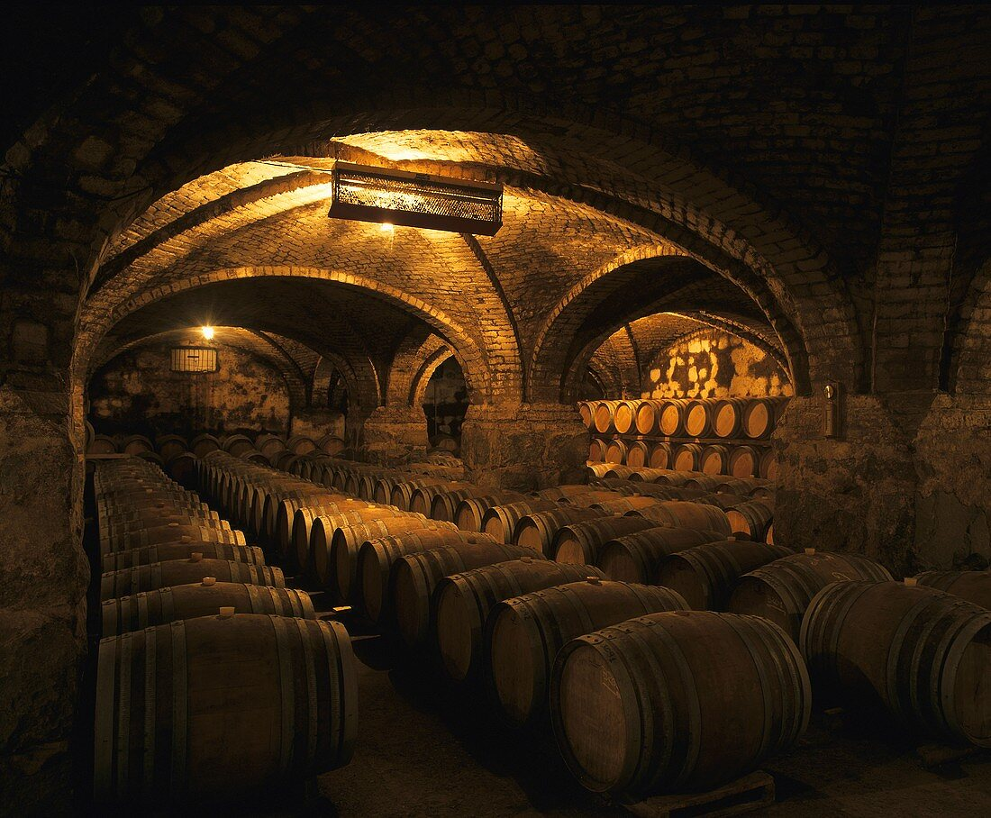 Weingut in Curico, Chile