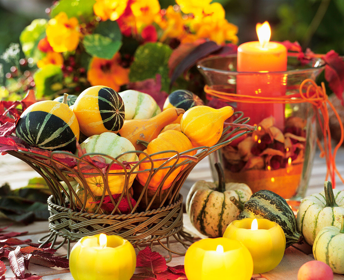 Assorted ornamental gourds with lighted candle
