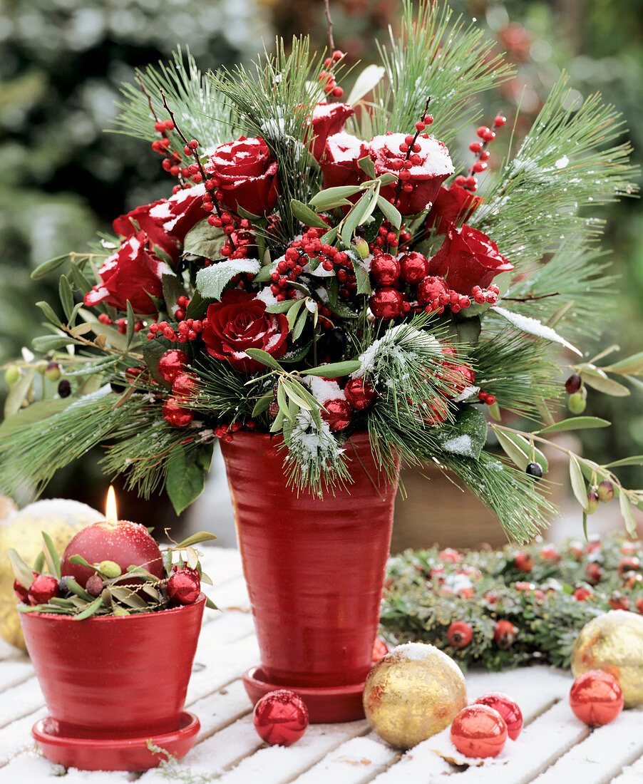Wintry arrangement of roses, white pine and holly