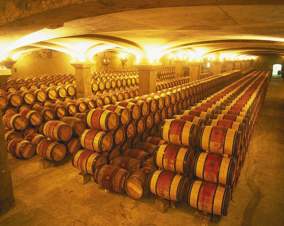 Barrique barrels in wine cellar of Château Margaux, Bordeaux