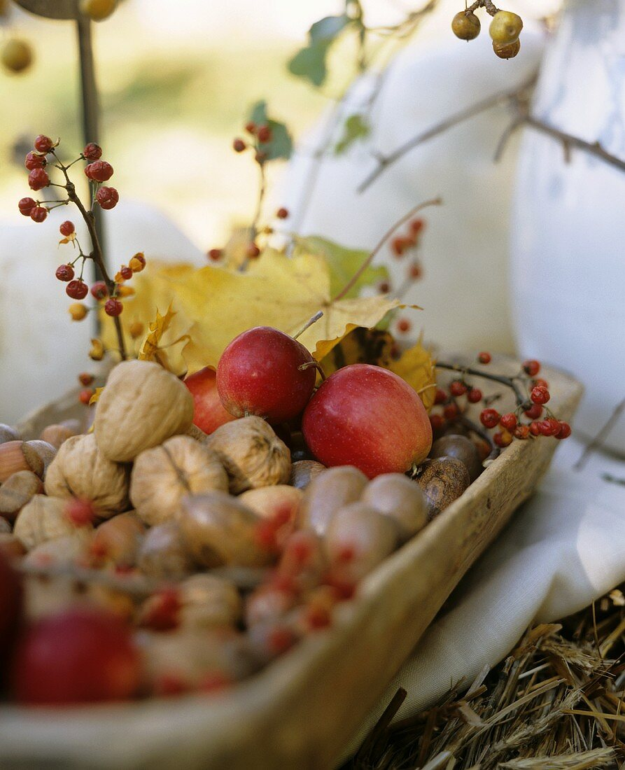 Autumn Centerpiece with Apples and Nuts