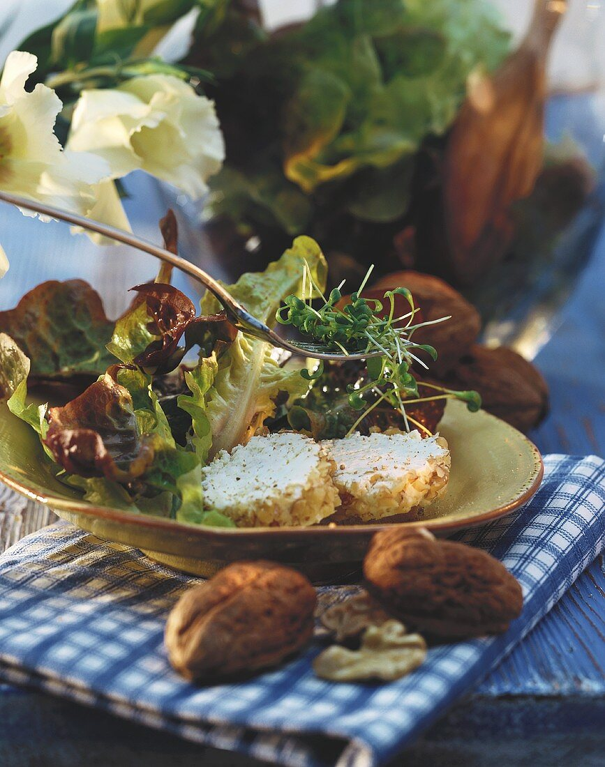 Oak leaf lettuce with slices of soft cheese and cress