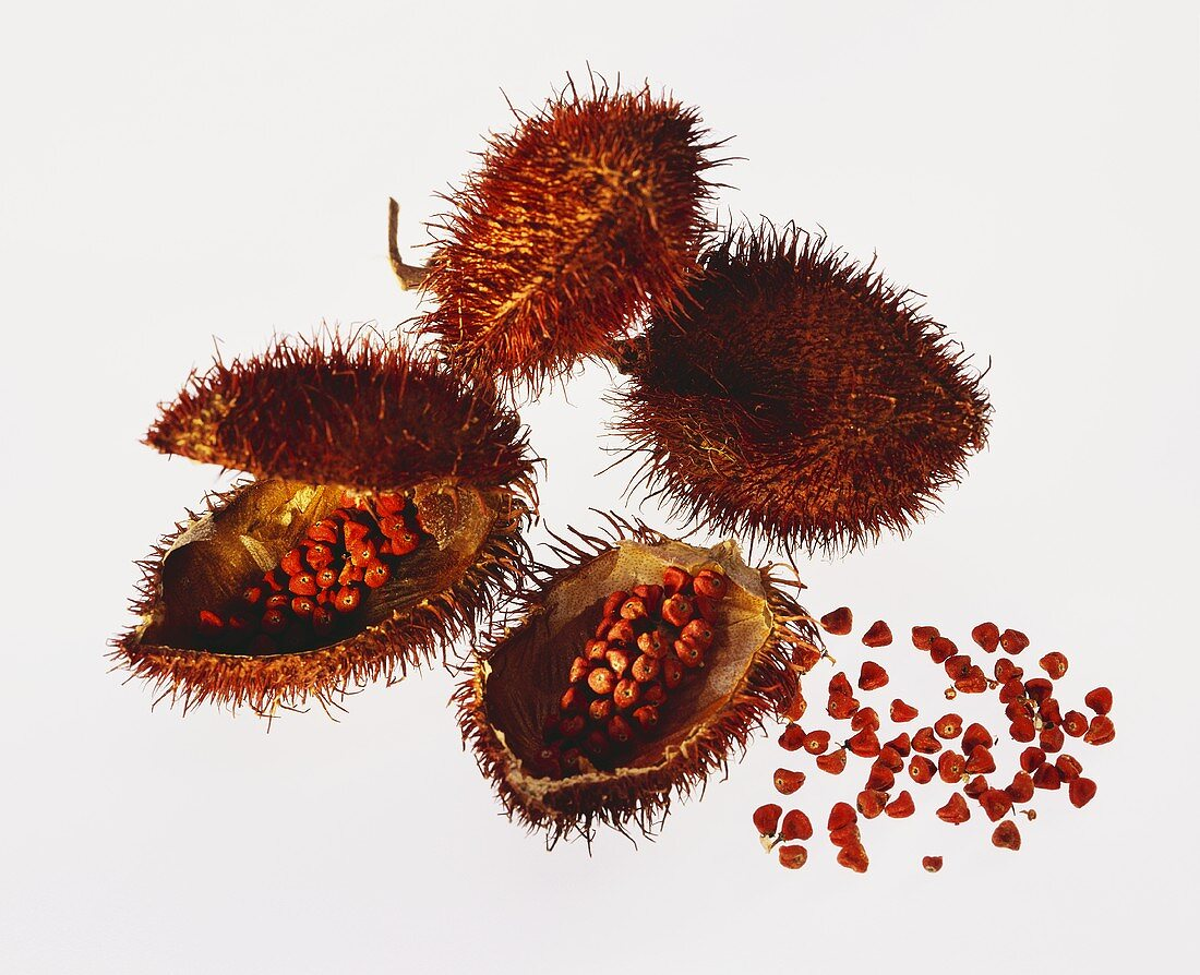 Annatto seeds with flowers