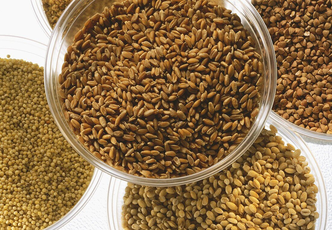 Various cereal grains in bowls