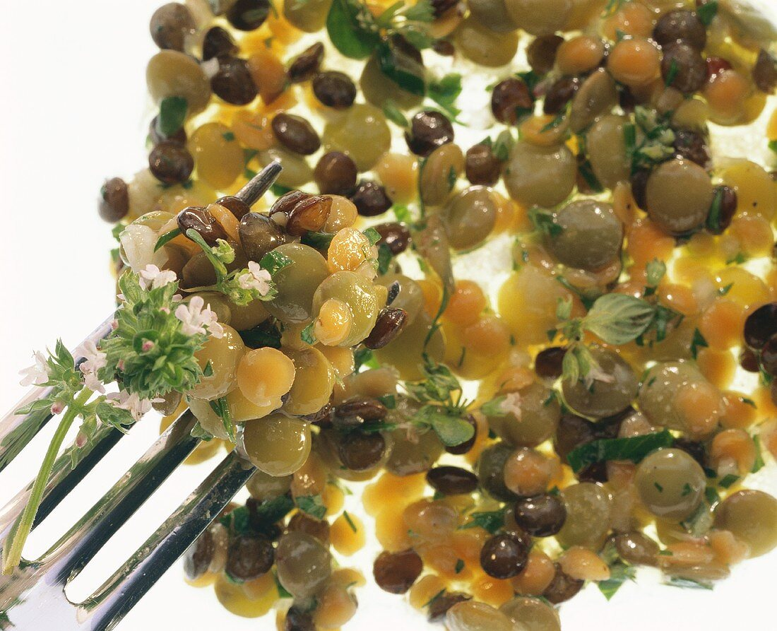 Lentil salad with sprigs of thyme (close-up with fork)
