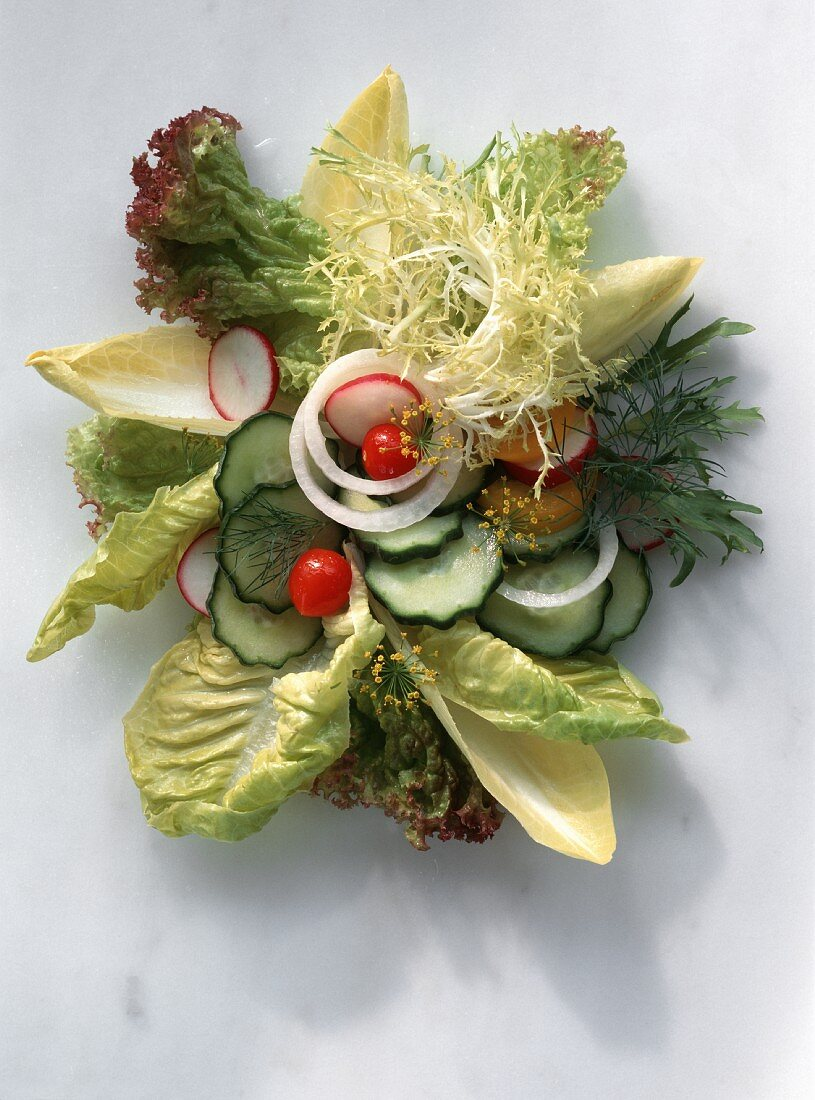 Various salad leaves with cucumber, onions, radishes