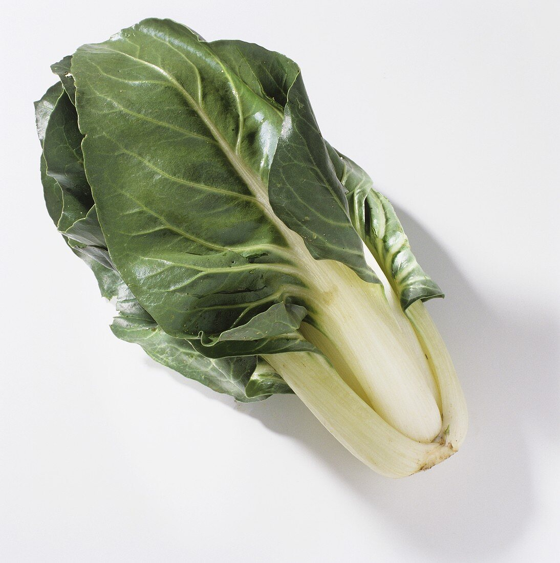 Leaf beet (Swiss chard with white stalk)