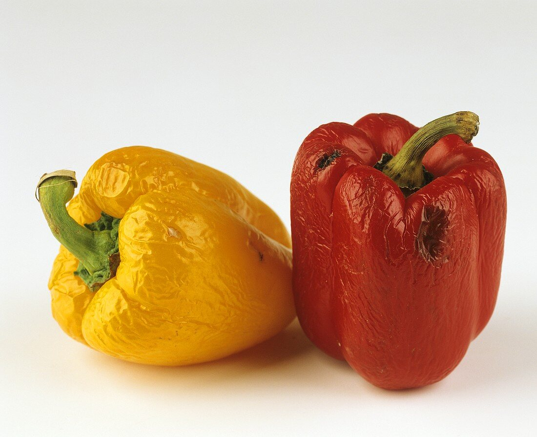 A rotten red and yellow pepper