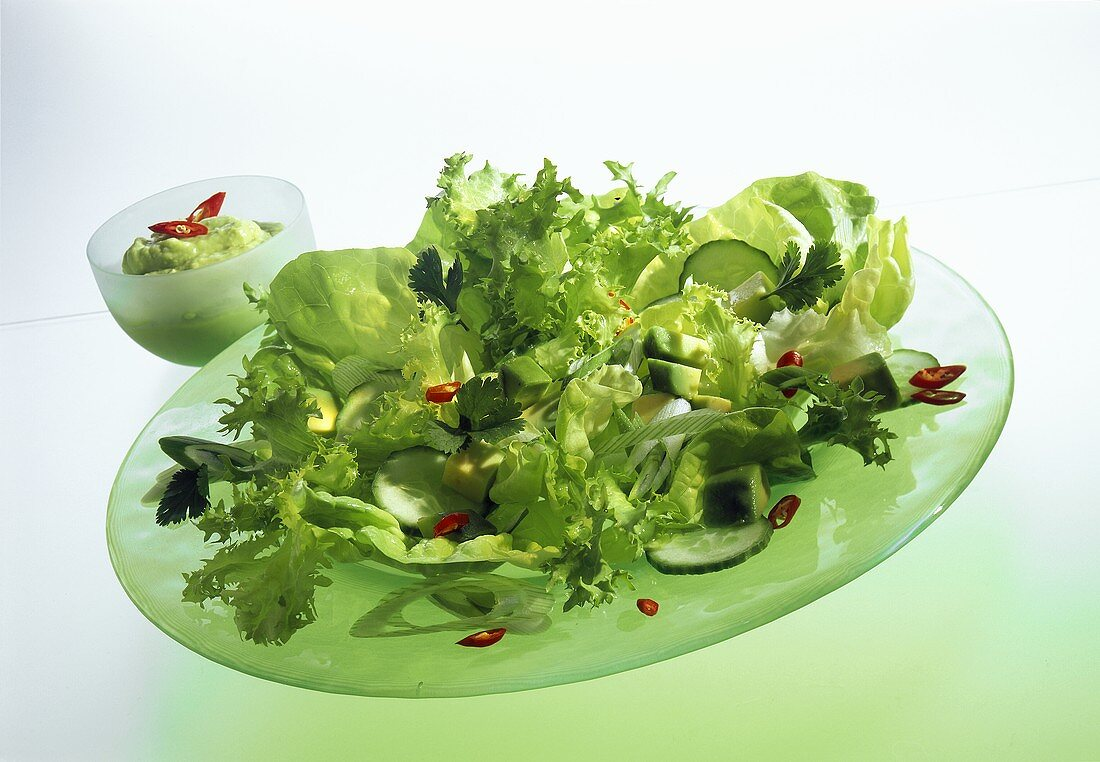 Mixed salad leaves with avocados, cucumber & chilis