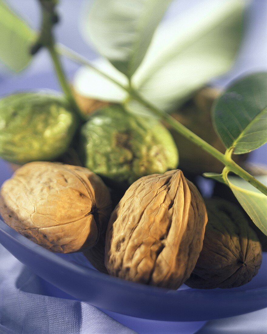 Unshelled walnuts, some still in green outer shell