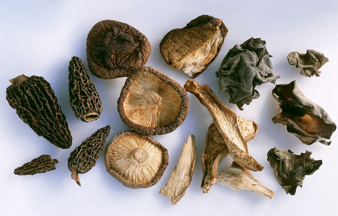 Dried mushrooms: morels, ceps, jelly ear fungus, shiitake
