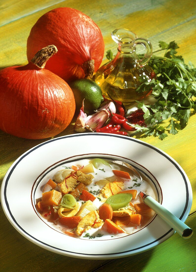 Chicken and pumpkin stew with leeks & carrots on white plate