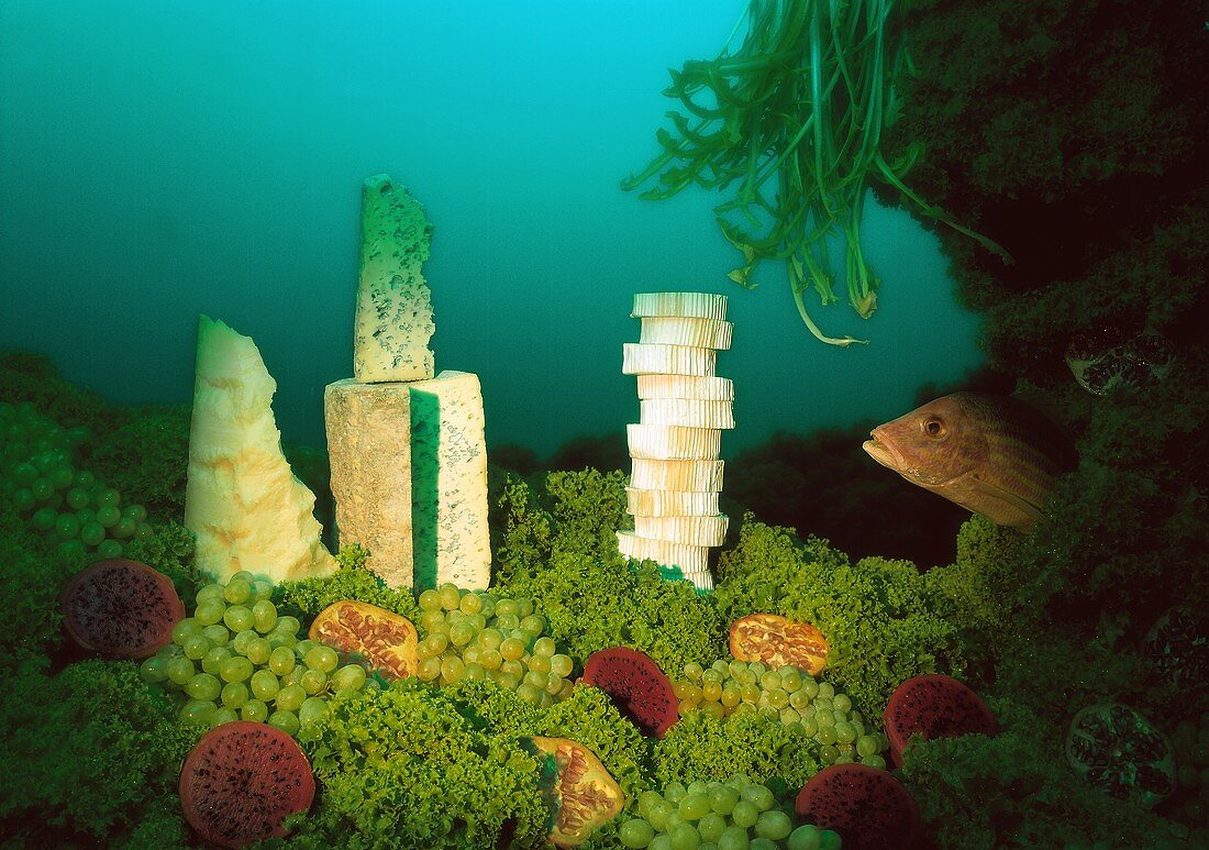 Marine landscape of lettuce, cheese and fruit with a fish