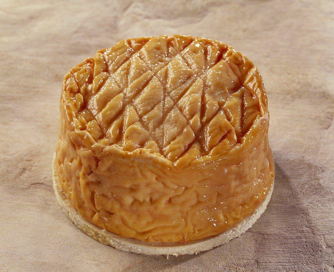 Ami de Chambertin, a French soft cheese