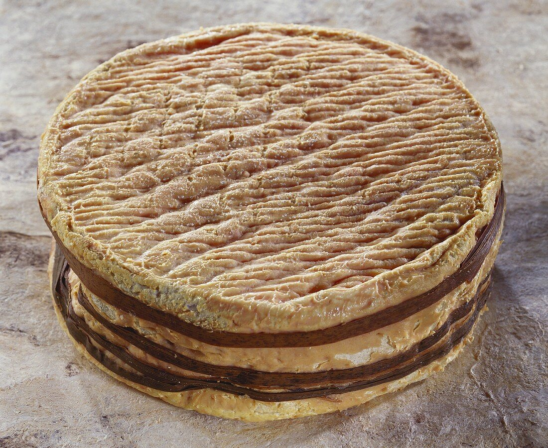 French Livarot cheese on brown background