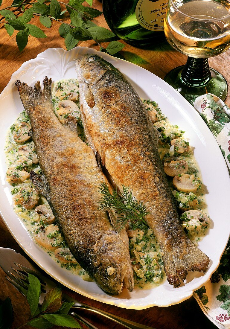 Baden style trout with herb mushroom sauce; white wine