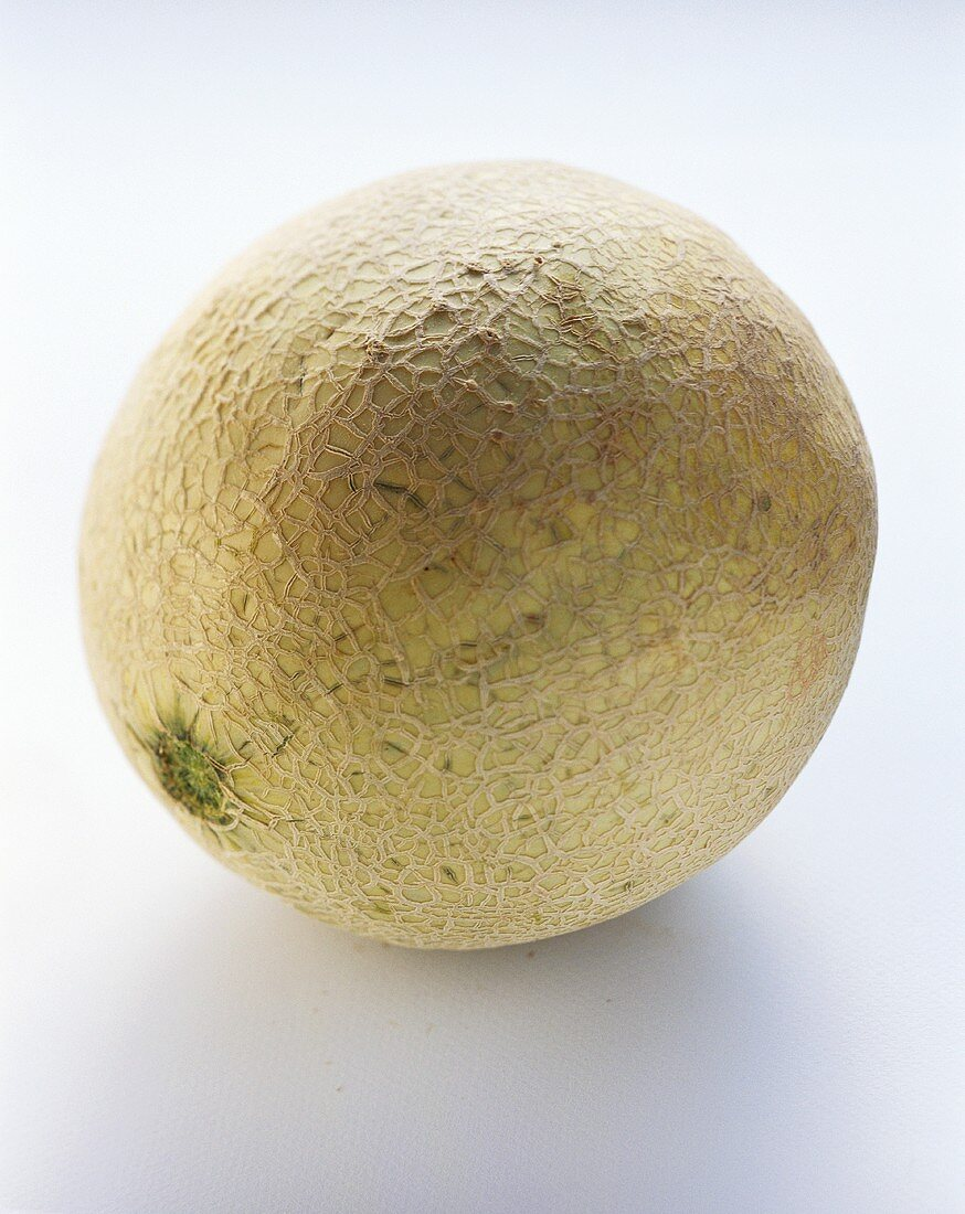 A netted melon