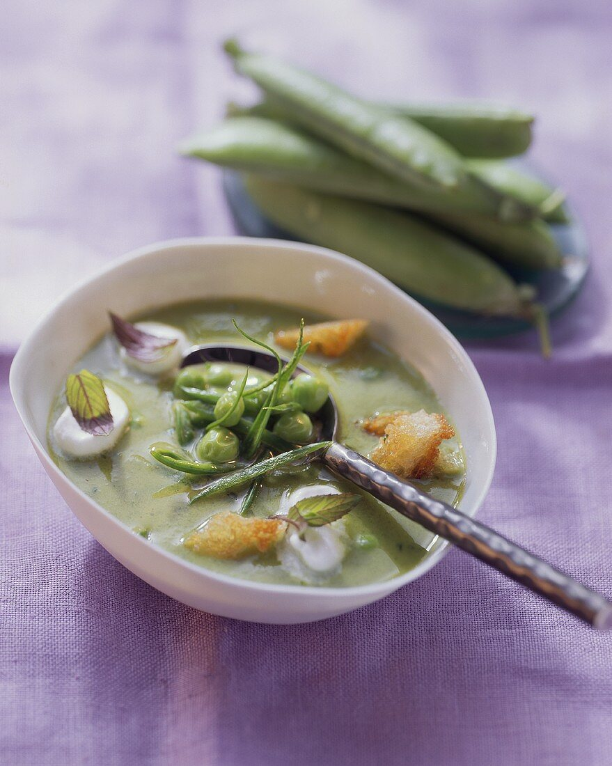 Pea soup with mint, crème fraiche and croutons