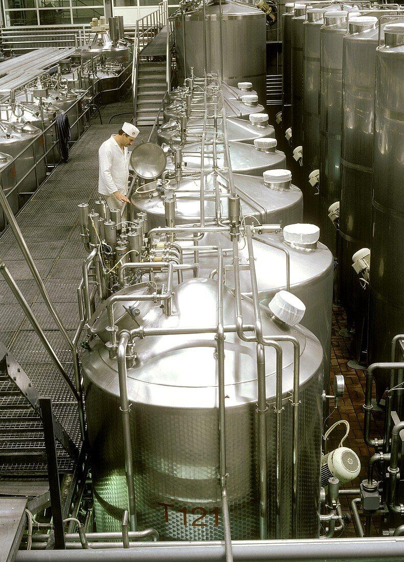 Technician at fermenting tank in a yoghurt factory