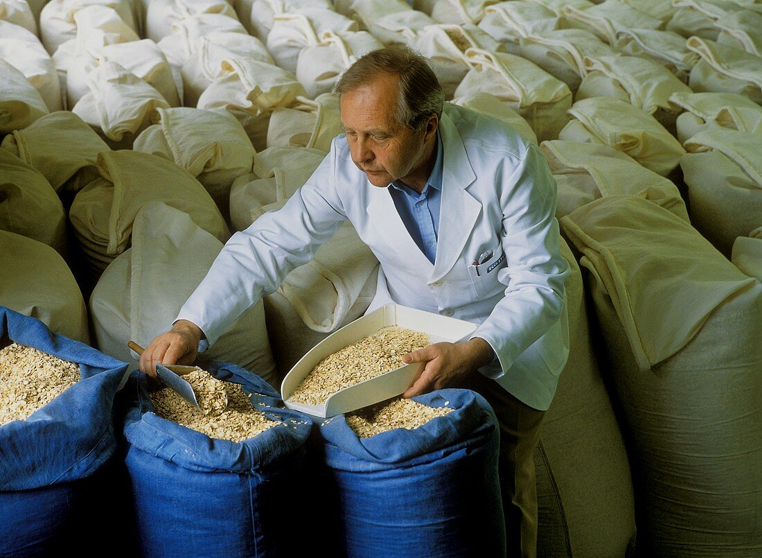 Miller checking the quality of oats