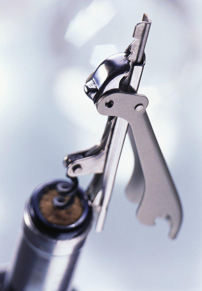 Corkscrew (Puigpull) on wine bottle