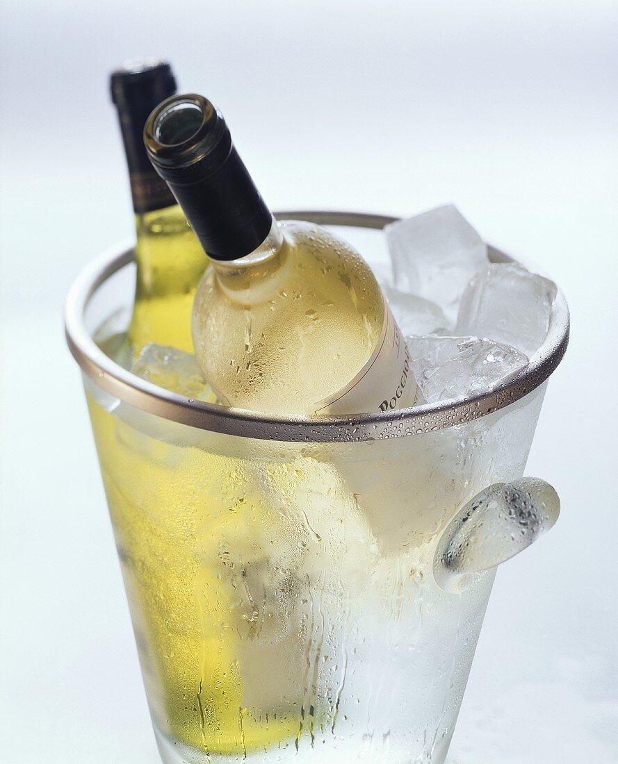 Two white wine bottles in ice bucket