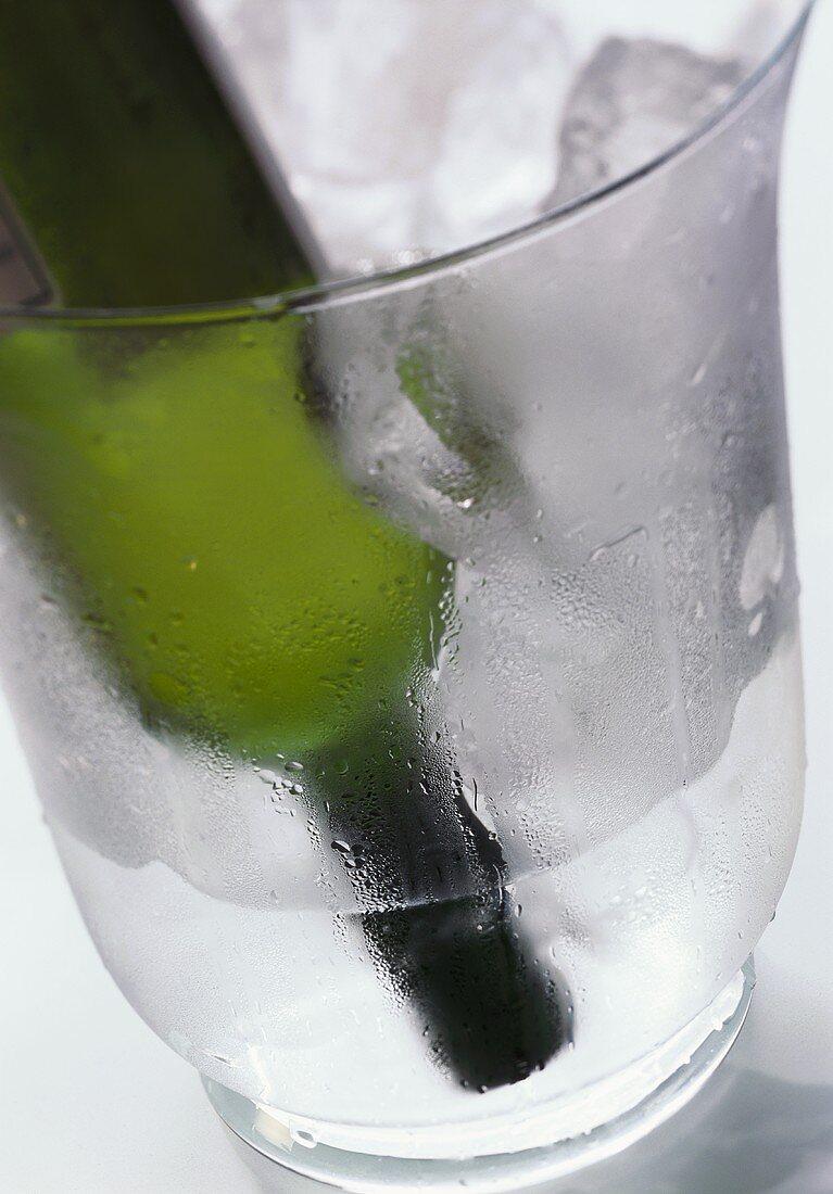 White wine bottle upside down in ice bucket (rapid cooling)