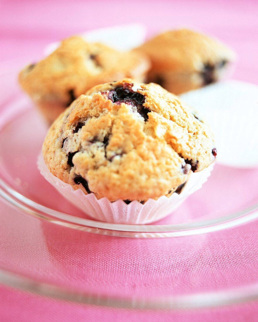 Blueberry yoghurt muffin in paper case on glass plate